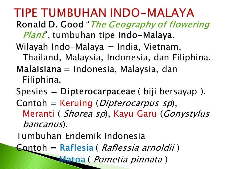 TIPE TUMBUHAN INDO-MALAYA