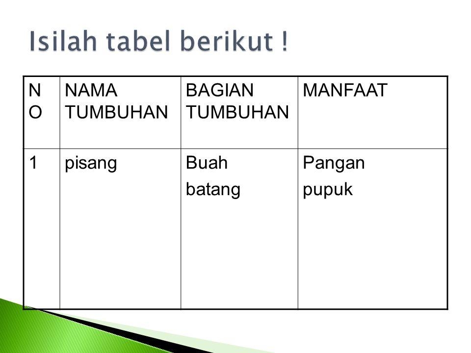Isilah tabel berikut ! NO NAMA TUMBUHAN BAGIAN TUMBUHAN MANFAAT 1