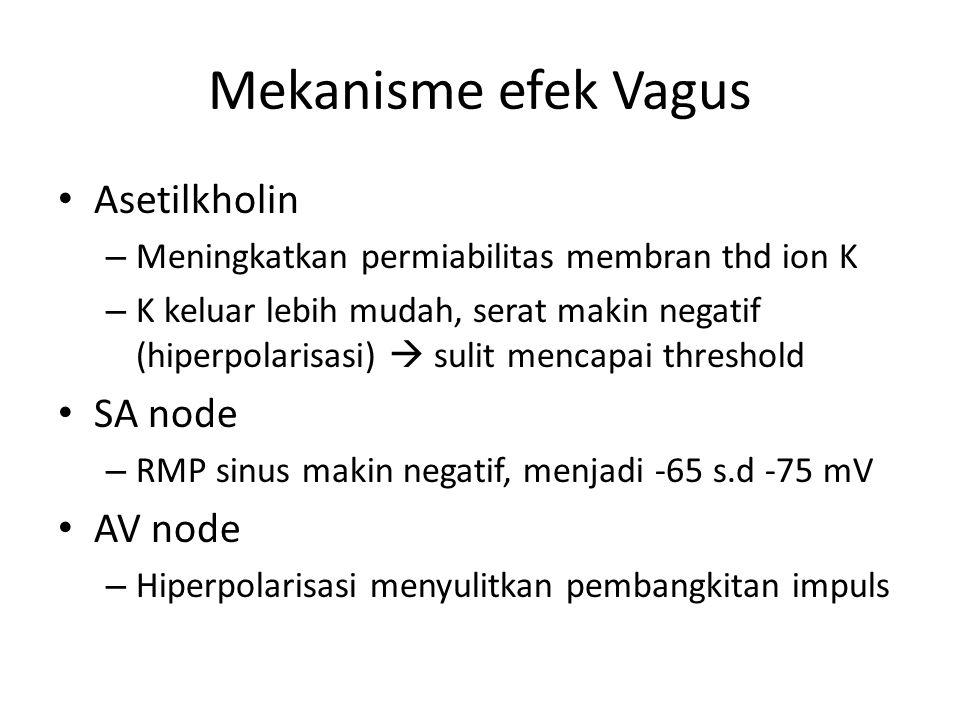 Mekanisme efek Vagus Asetilkholin SA node AV node