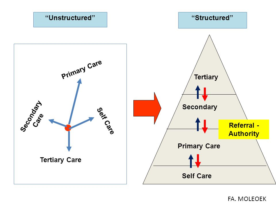 Unstructured Structured Primary Care. Tertiary. Secondary. Secondary Care. Self Care. Referral - Authority.