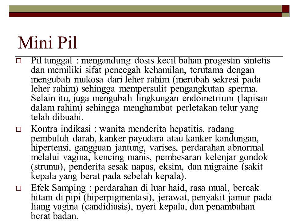 Mini Pil