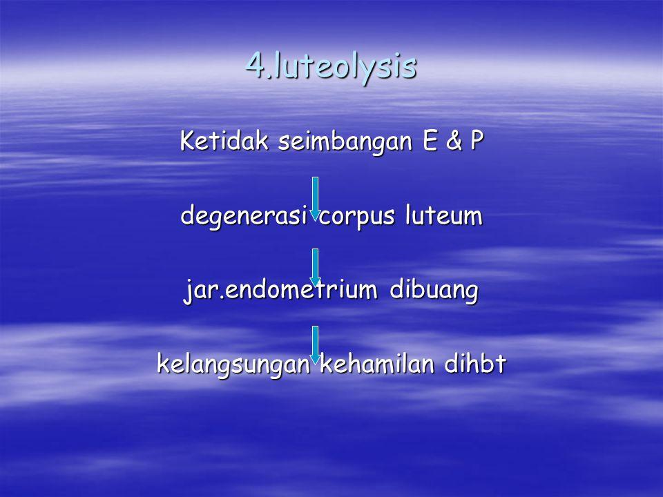 4.luteolysis Ketidak seimbangan E & P degenerasi corpus luteum