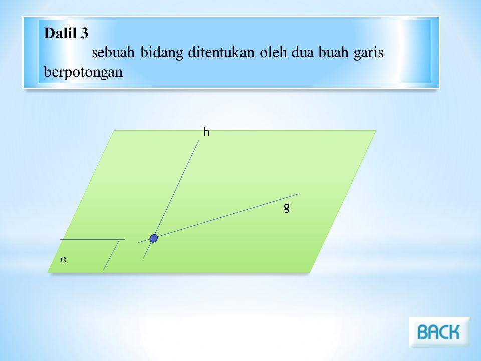 Dalil 3 sebuah bidang ditentukan oleh dua buah garis berpotongan h α g