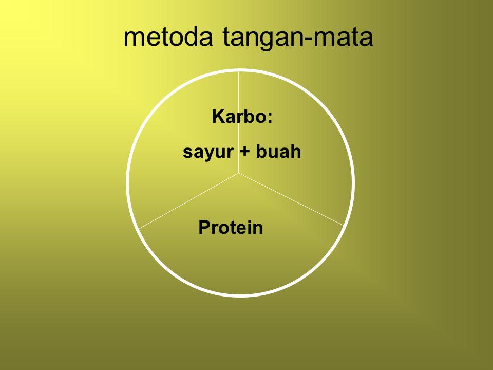 metoda tangan-mata Karbo: sayur + buah Protein