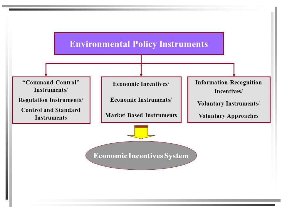 Environmental Policy Instruments