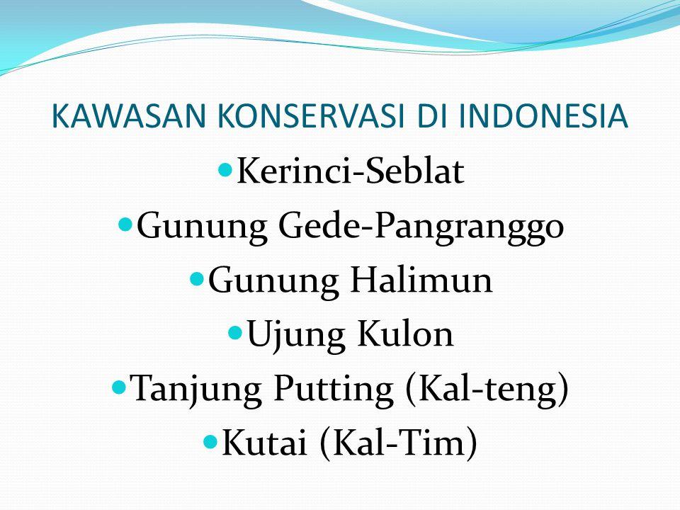 KAWASAN KONSERVASI DI INDONESIA