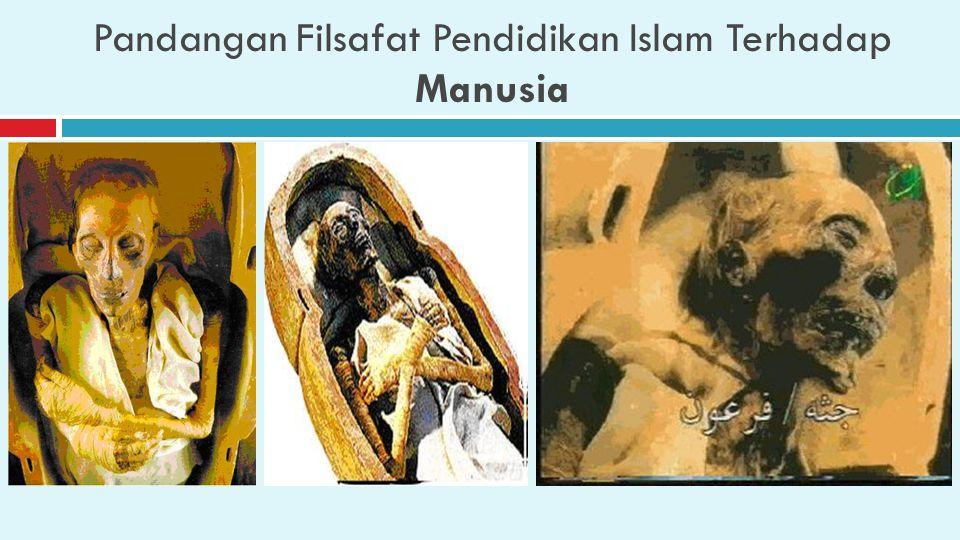 Pandangan Filsafat Pendidikan Islam Terhadap Manusia