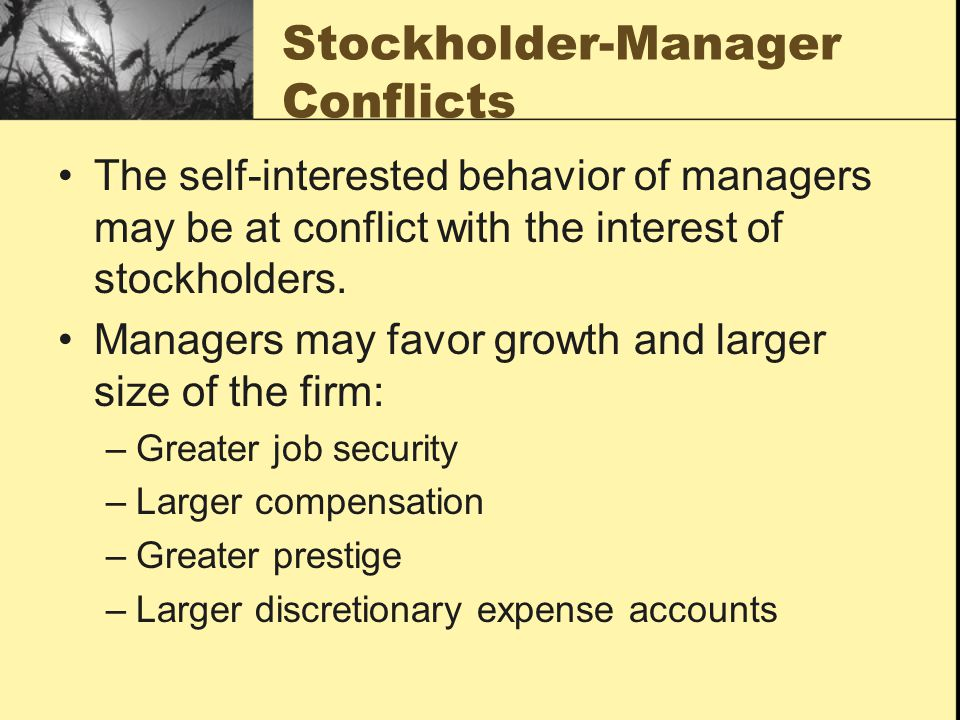 Stockholder-Manager Conflicts