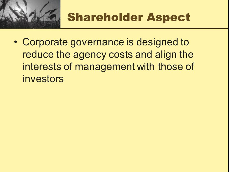 Shareholder Aspect Corporate governance is designed to reduce the agency costs and align the interests of management with those of investors.
