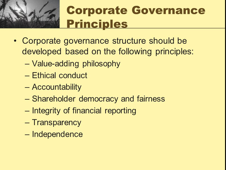 Corporate Governance Principles