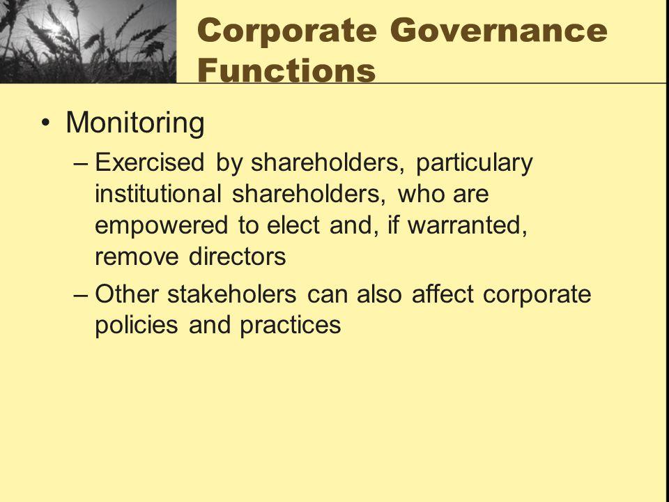 Corporate Governance Functions