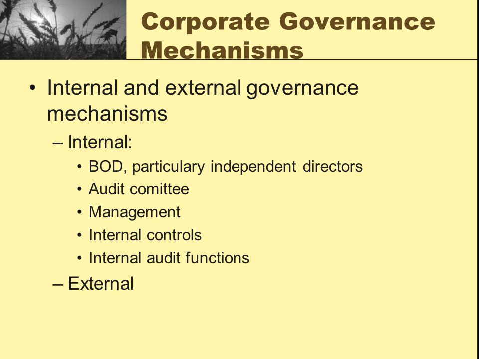 Corporate Governance Mechanisms