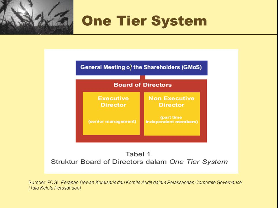 One Tier System Sumber: FCGI.