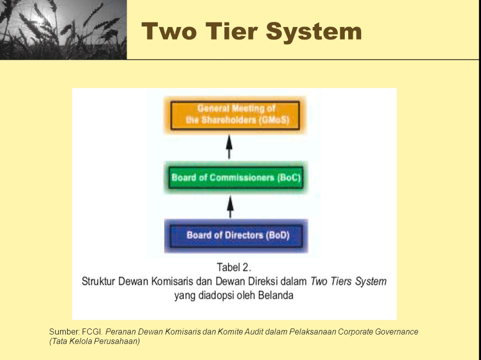 Two Tier System Sumber: FCGI.