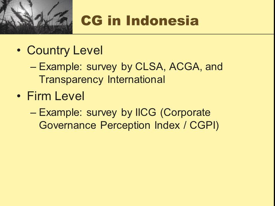 CG in Indonesia Country Level Firm Level