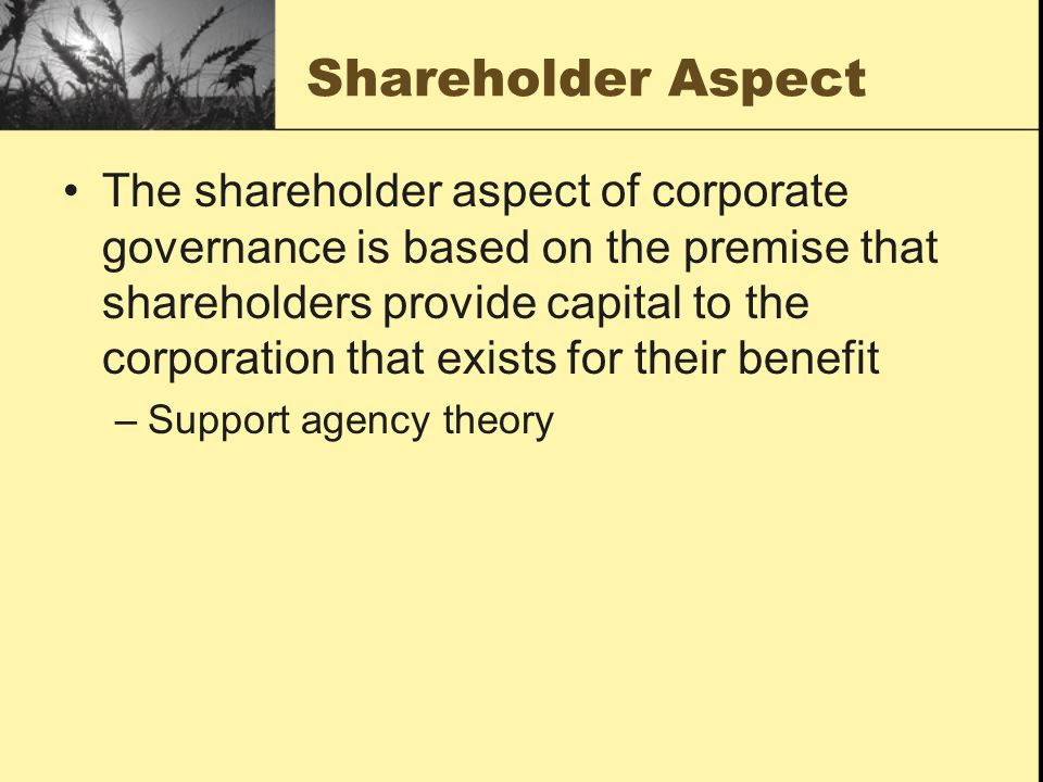 Shareholder Aspect