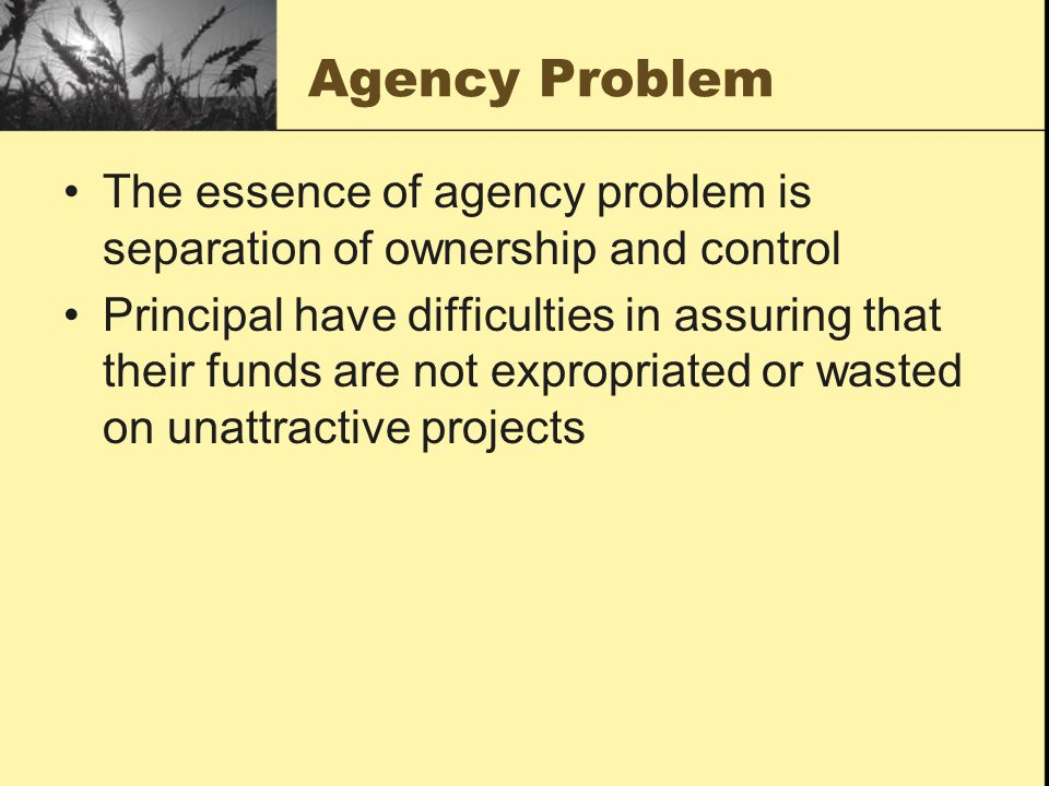 Agency Problem The essence of agency problem is separation of ownership and control.