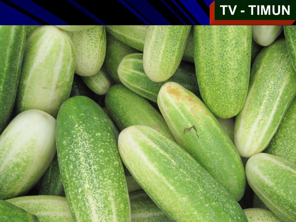 TV - TIMUN