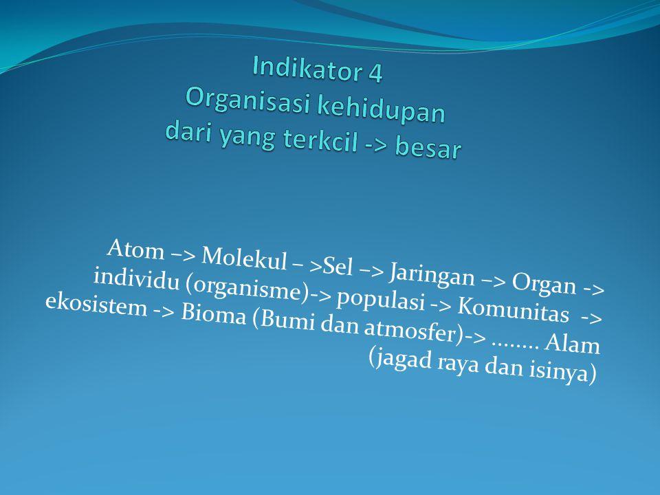 Indikator 4 Organisasi kehidupan dari yang terkcil -> besar