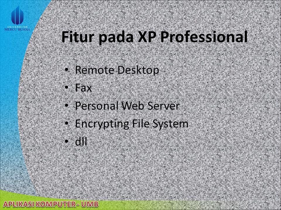 Fitur pada XP Professional