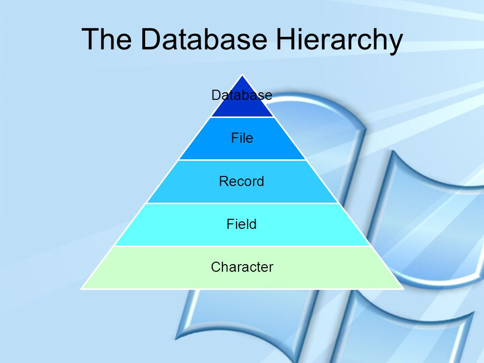 The Database Hierarchy
