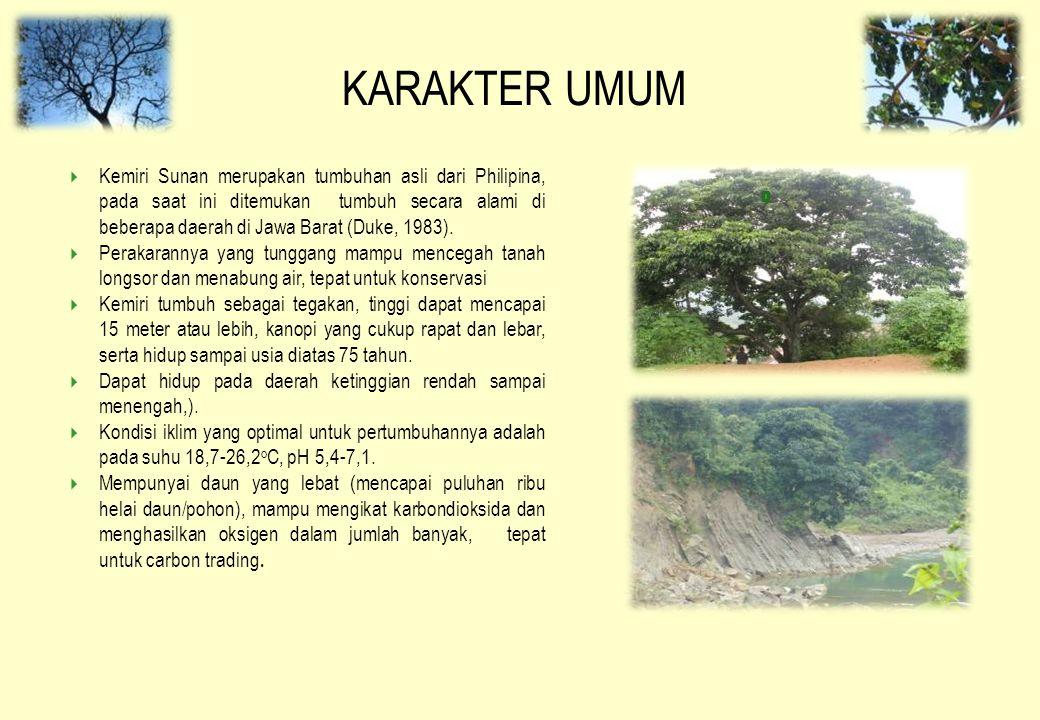 KARAKTER UMUM