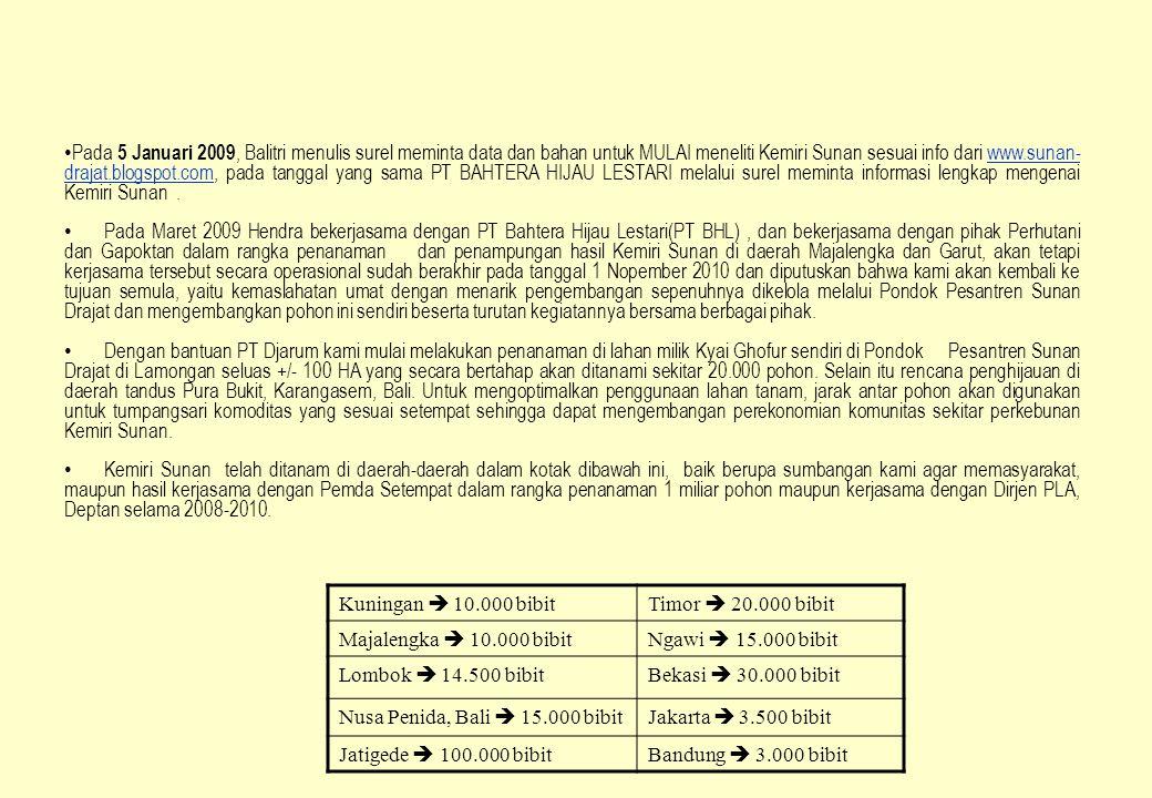 Pada 5 Januari 2009, Balitri menulis surel meminta data dan bahan untuk MULAI meneliti Kemiri Sunan sesuai info dari www.sunan-drajat.blogspot.com, pada tanggal yang sama PT BAHTERA HIJAU LESTARI melalui surel meminta informasi lengkap mengenai Kemiri Sunan .
