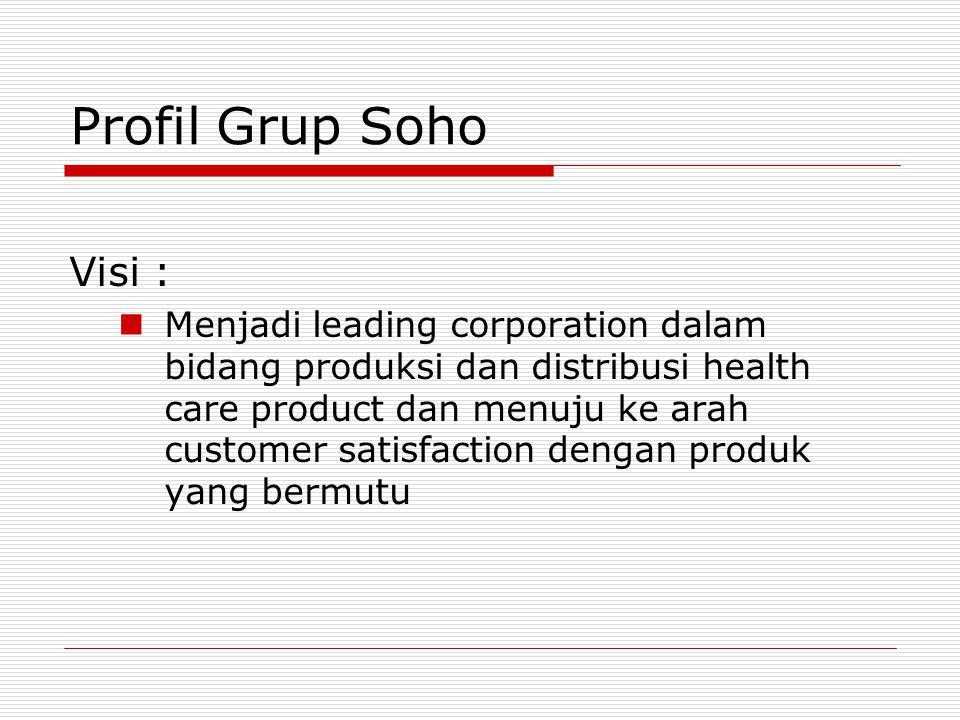 Profil Grup Soho Visi :
