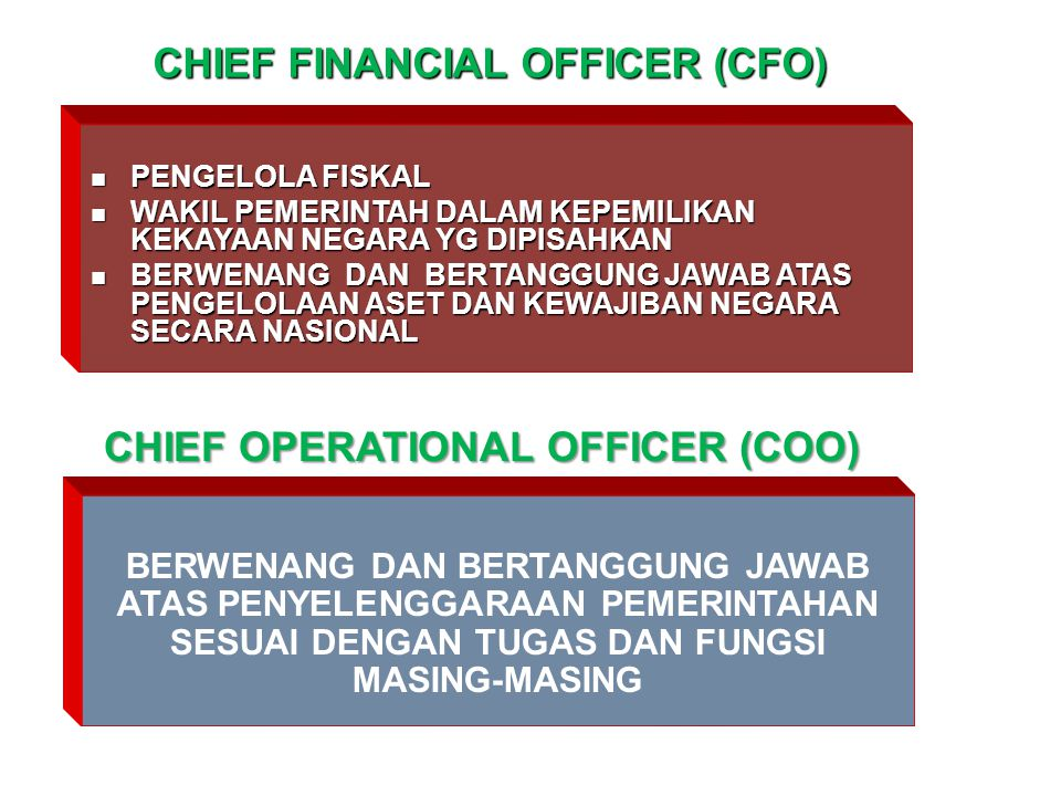 CHIEF FINANCIAL OFFICER (CFO) CHIEF OPERATIONAL OFFICER (COO)