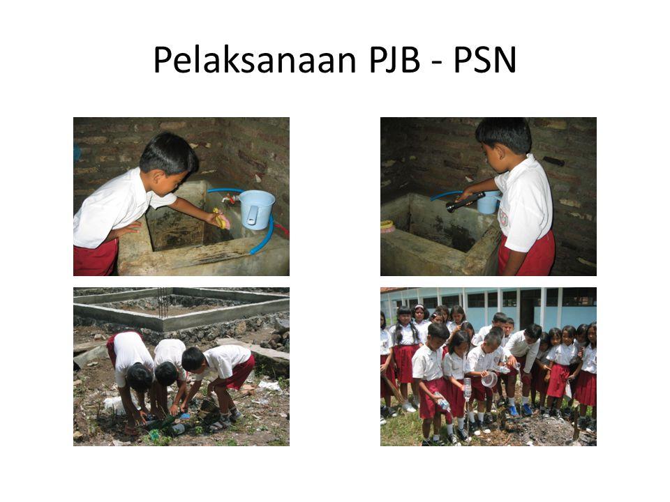 Pelaksanaan PJB - PSN