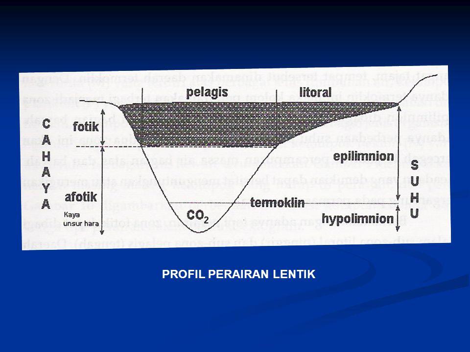PROFIL PERAIRAN LENTIK