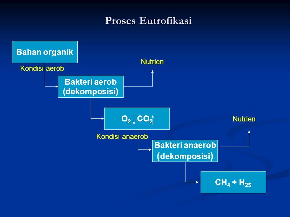 Proses Eutrofikasi (dekomposisi) Bahan organik Bakteri aerob