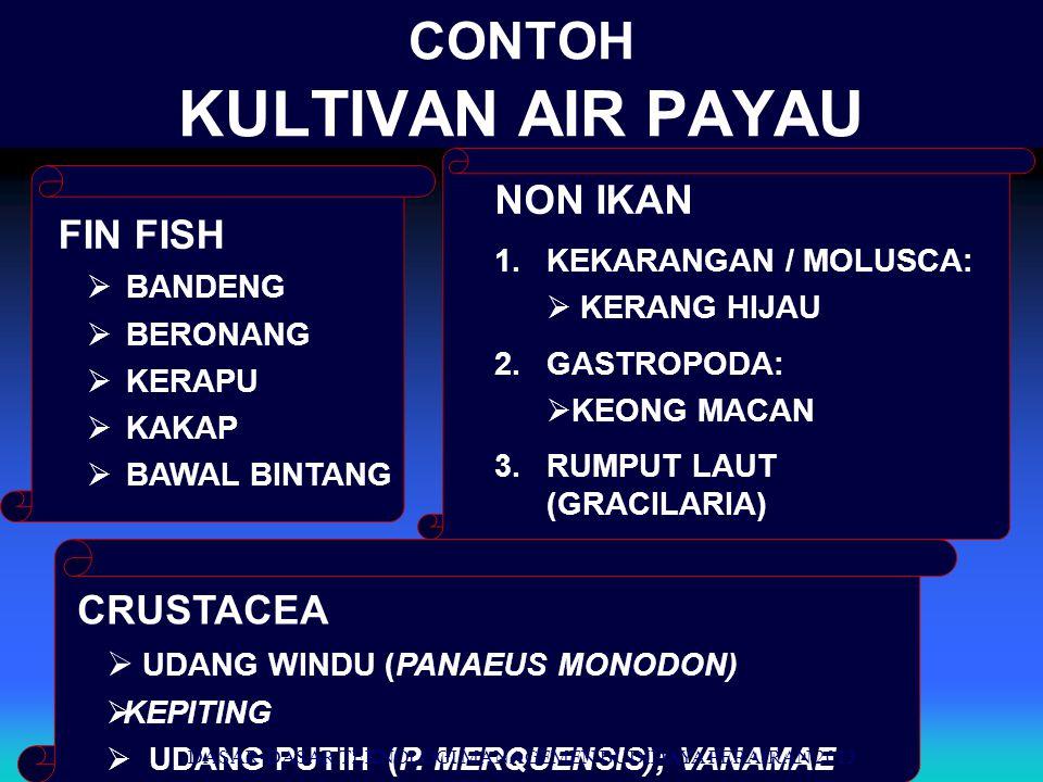 DASAR-DASAR TEKNOLOGI MANAGEMEN BUDIDAYA PERAIRAN 2013