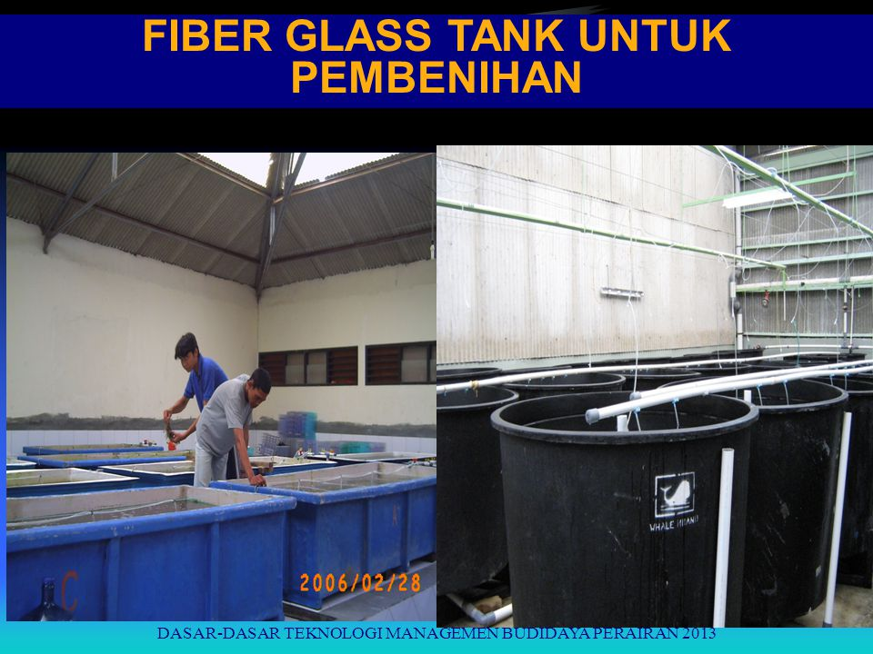 FIBER GLASS TANK UNTUK PEMBENIHAN