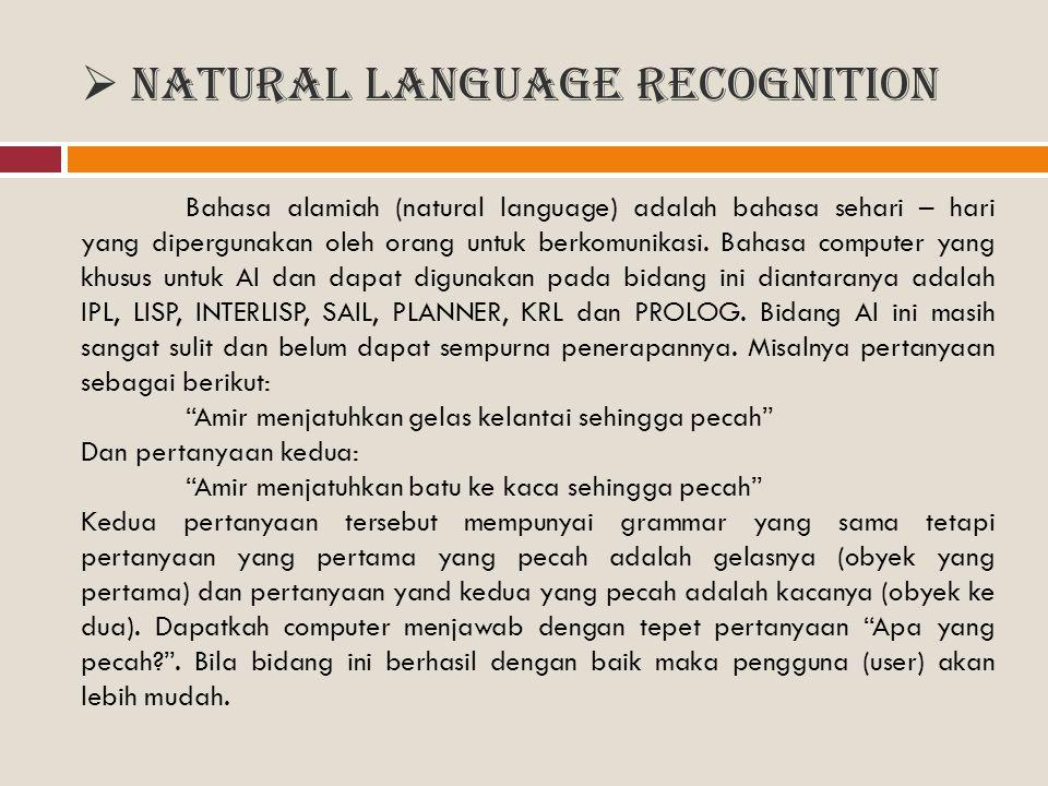 Natural Language Recognition