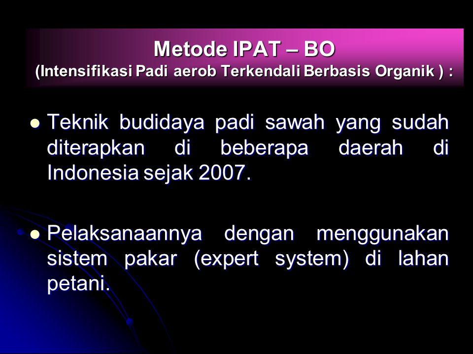 Metode IPAT – BO (Intensifikasi Padi aerob Terkendali Berbasis Organik ) :