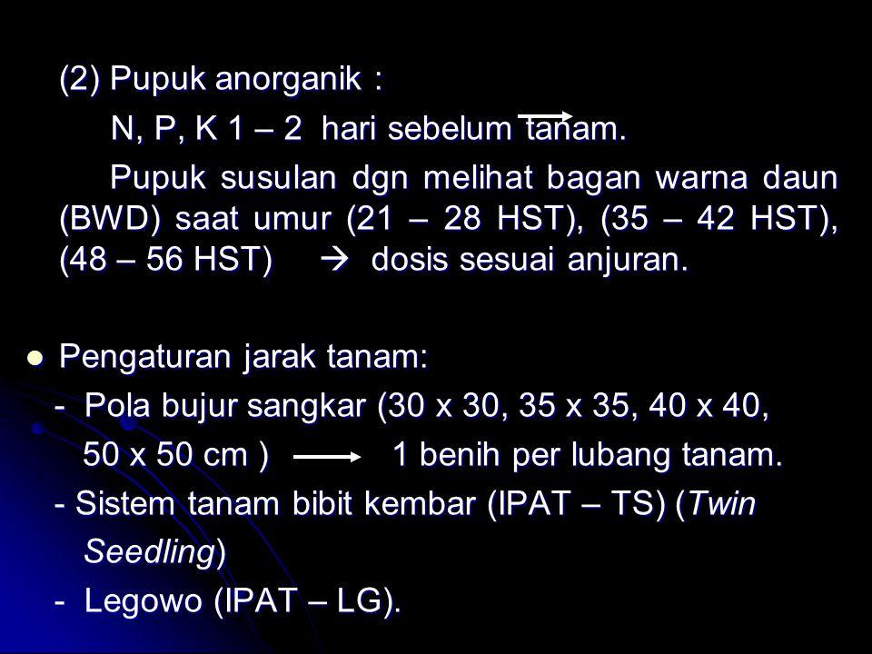 (2) Pupuk anorganik : N, P, K 1 – 2 hari sebelum tanam.