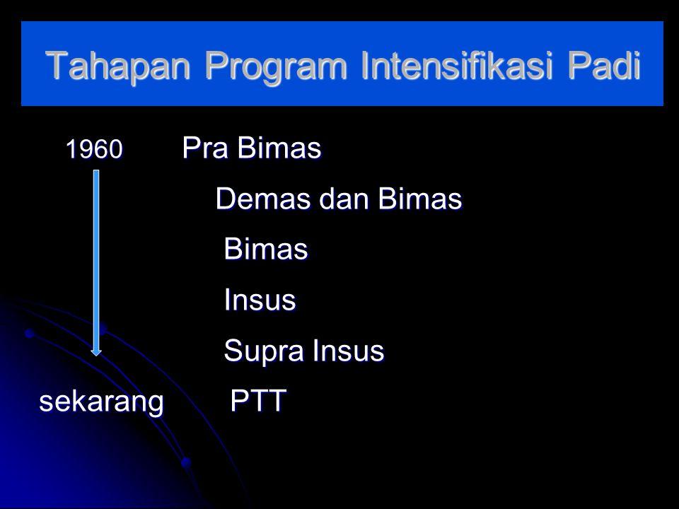 Tahapan Program Intensifikasi Padi