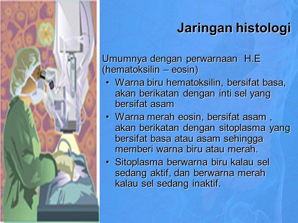 Jaringan histologi Umumnya dengan perwarnaan H.E (hematoksilin – eosin)