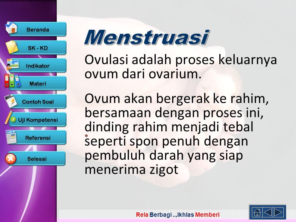 Ovulasi adalah proses keluarnya ovum dari ovarium.
