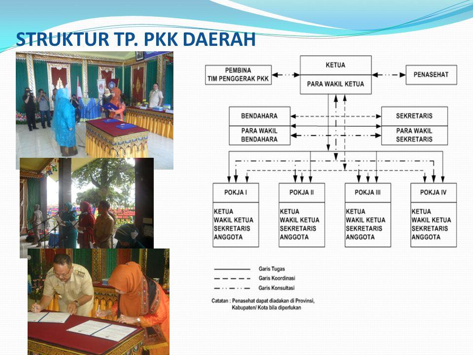 STRUKTUR TP. PKK DAERAH