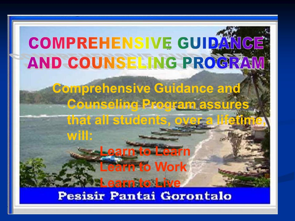 COMPREHENSIVE GUIDANCE AND COUNSELING PROGRAM