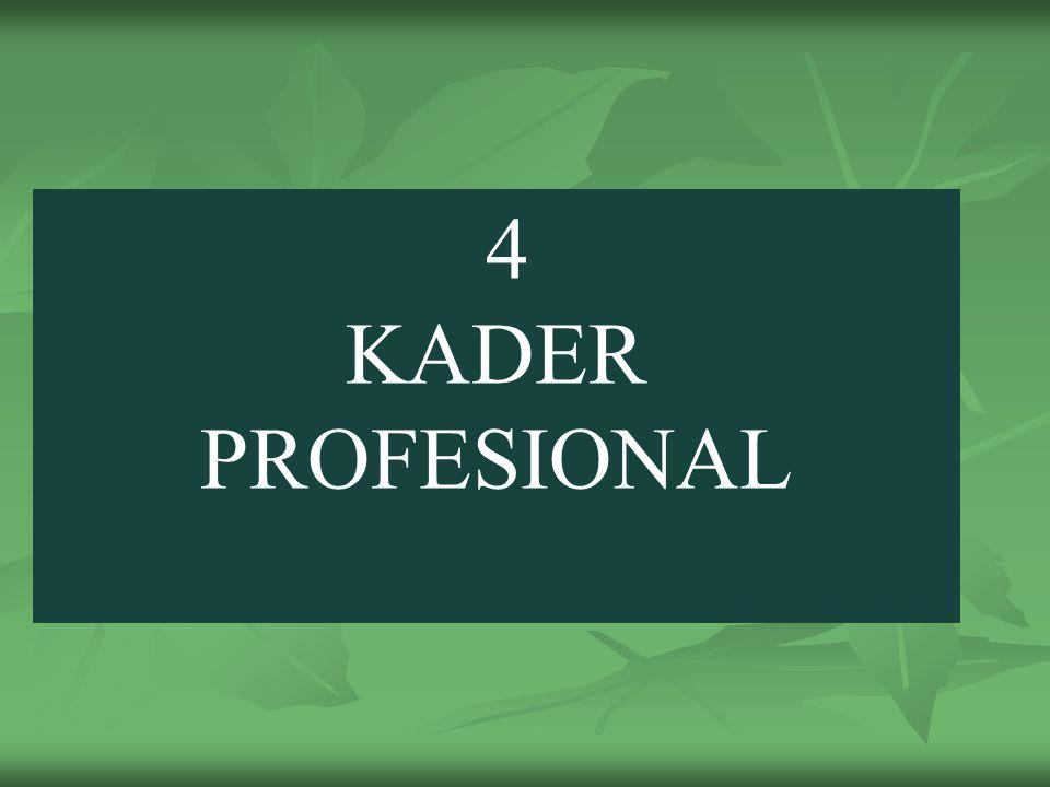 4 KADER PROFESIONAL