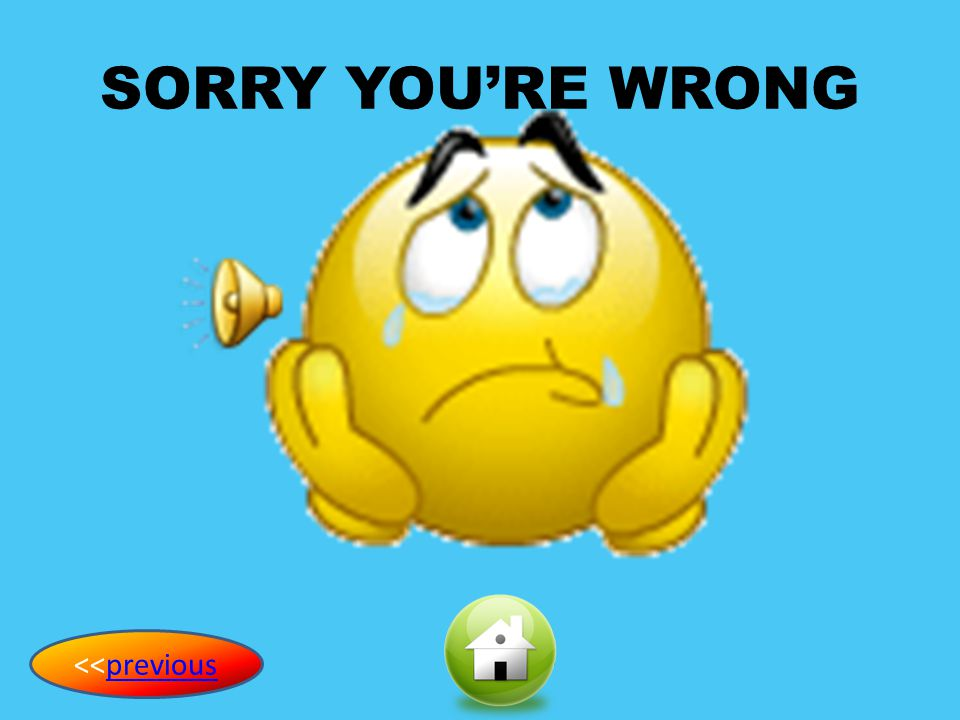 SORRY YOU'RE WRONG <<previous