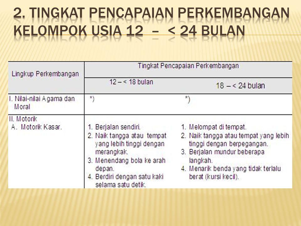 2. Tingkat Pencapaian Perkembangan Kelompok Usia 12 – < 24 Bulan