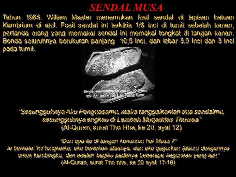 SENDAL MUSA