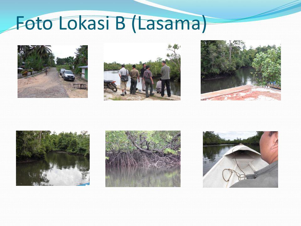 Foto Lokasi B (Lasama)