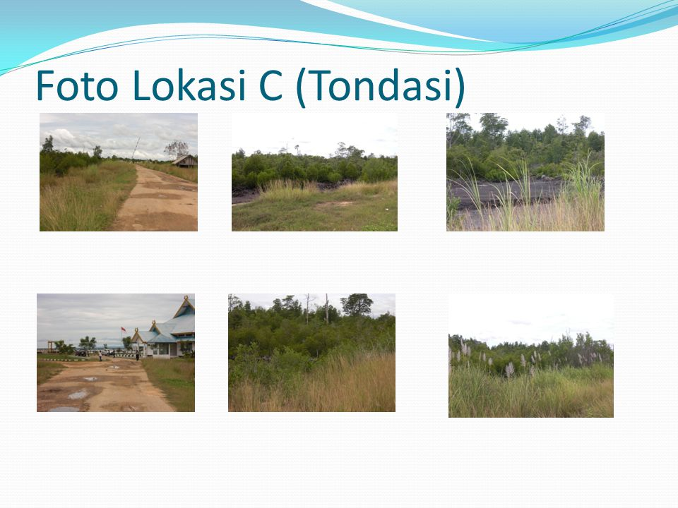 Foto Lokasi C (Tondasi)