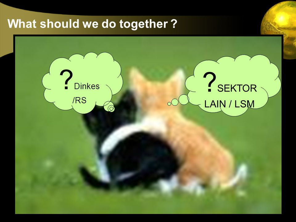 What should we do together