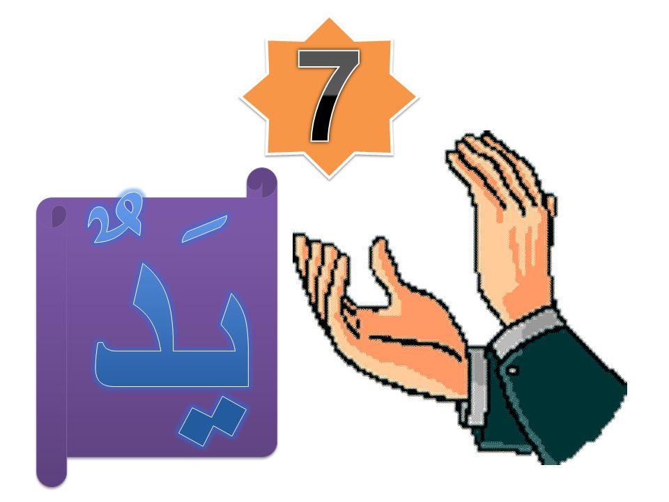 7 يَدٌ